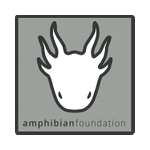 Protecting Amphibians and their Habitat. The Amphibian Foundation is dedicated to connecting individuals, communities & organizations in order to create & implement lasting solutions to the global amphibian extinction crisis.